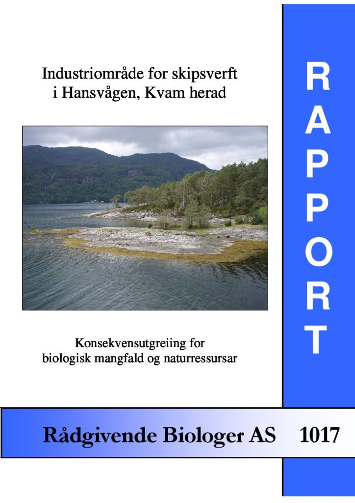Rapport cover - rapport 1017