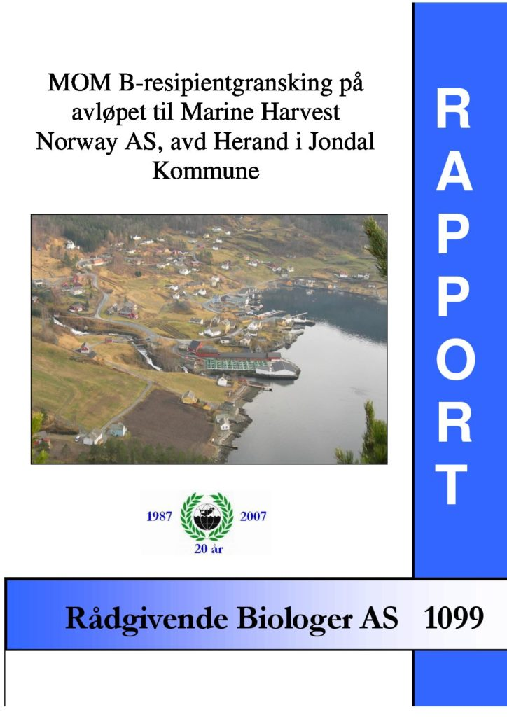 Rapport cover - rapport 1099