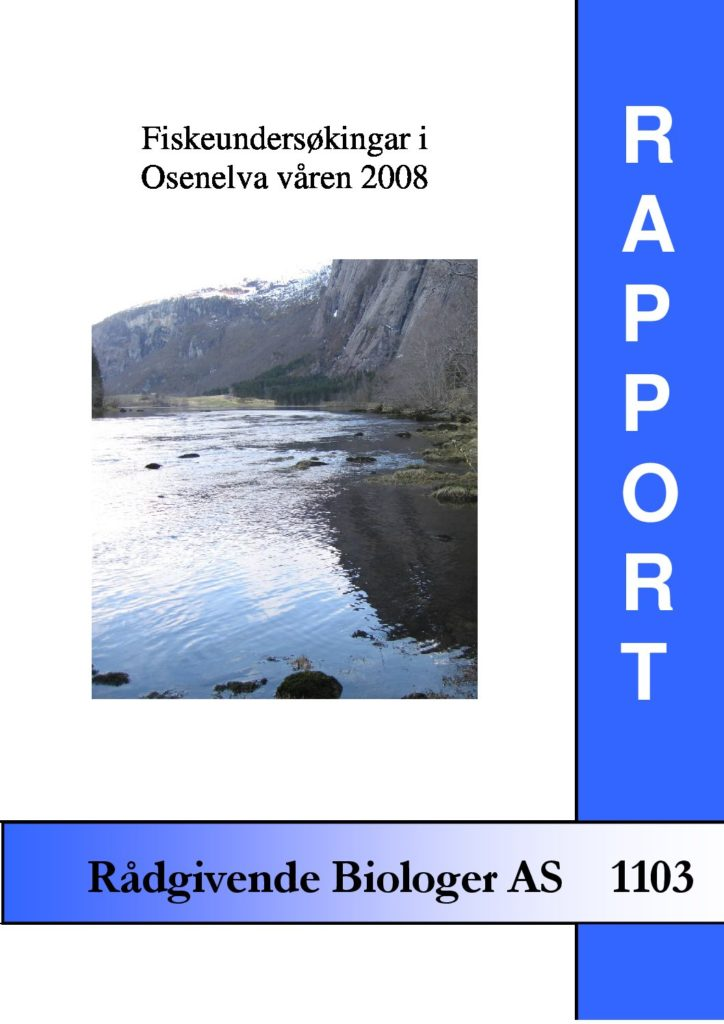 Rapport cover - rapport 1103