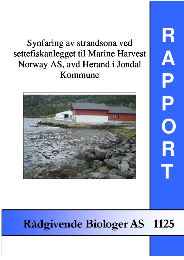 Rapport cover - rapport 1125
