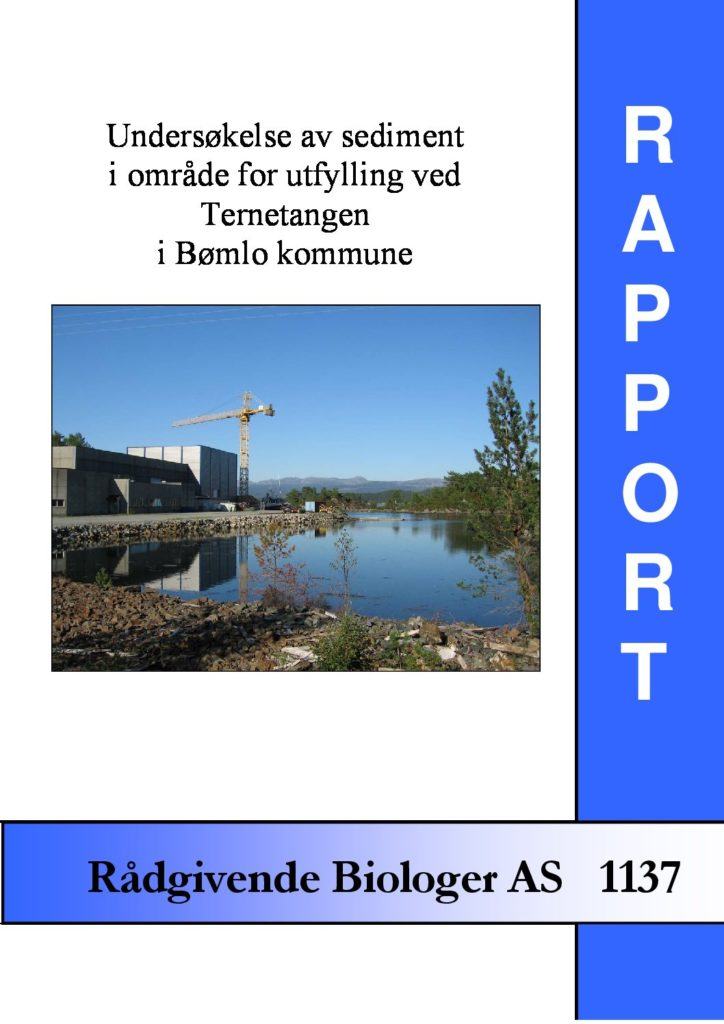 Rapport cover - rapport 1137