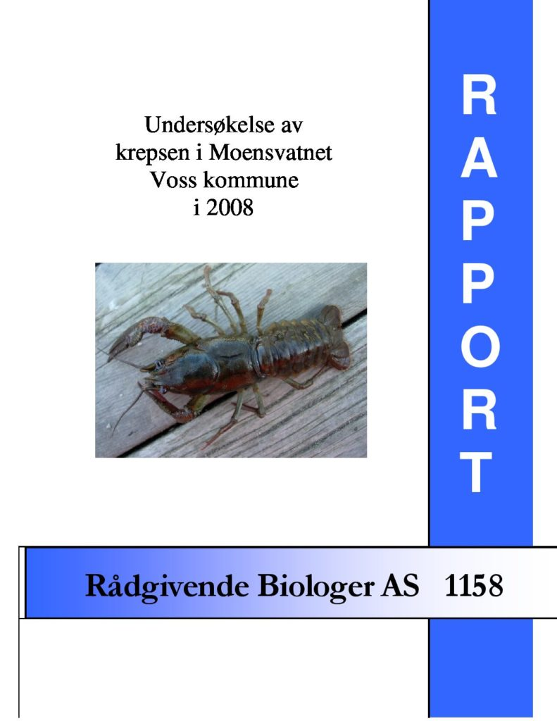 Rapport cover - rapport 1158