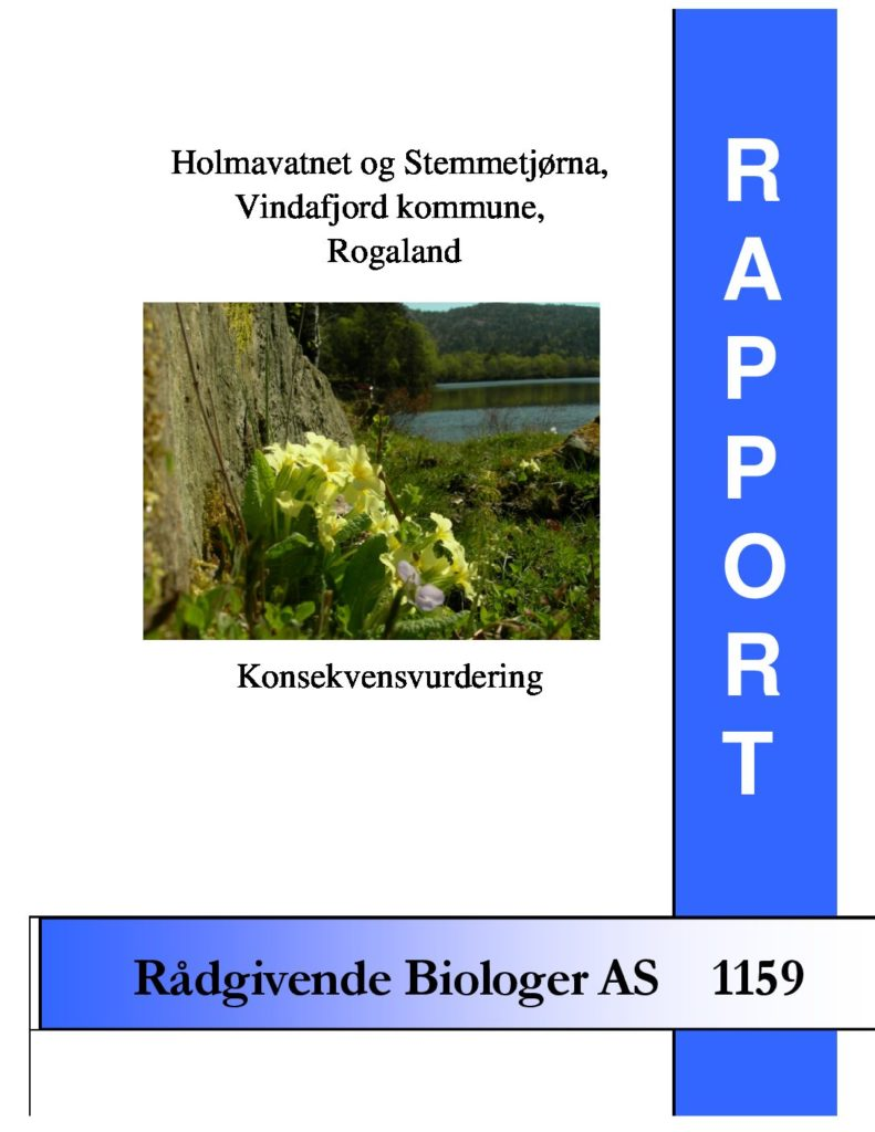 Rapport cover - rapport 1159