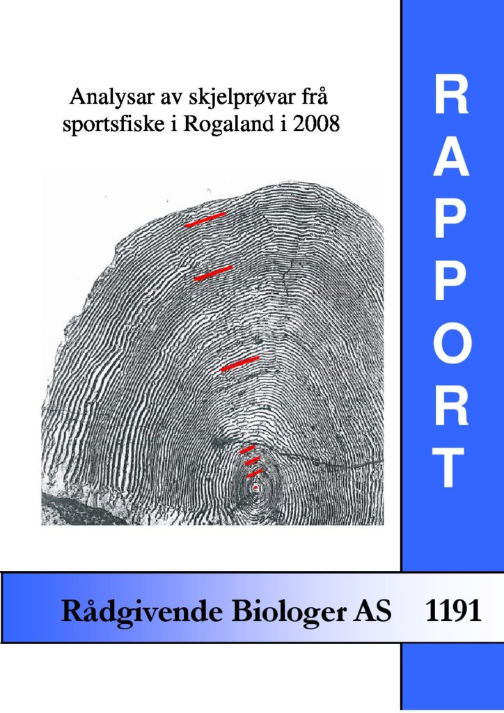 Rapport cover - rapport 1191