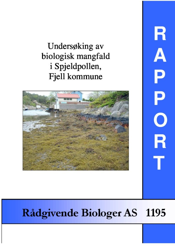 Rapport cover - rapport 1195
