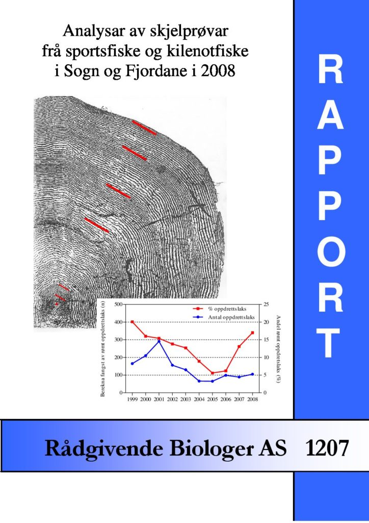 Rapport cover - rapport 1207