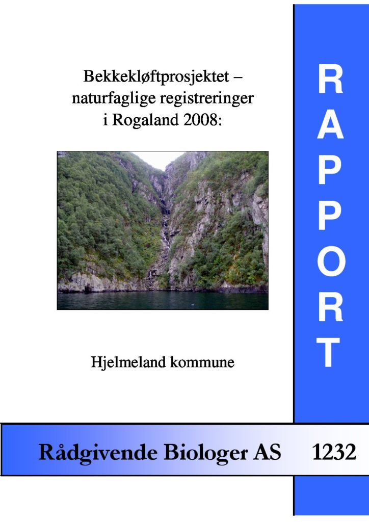 Rapport cover - rapport 1232