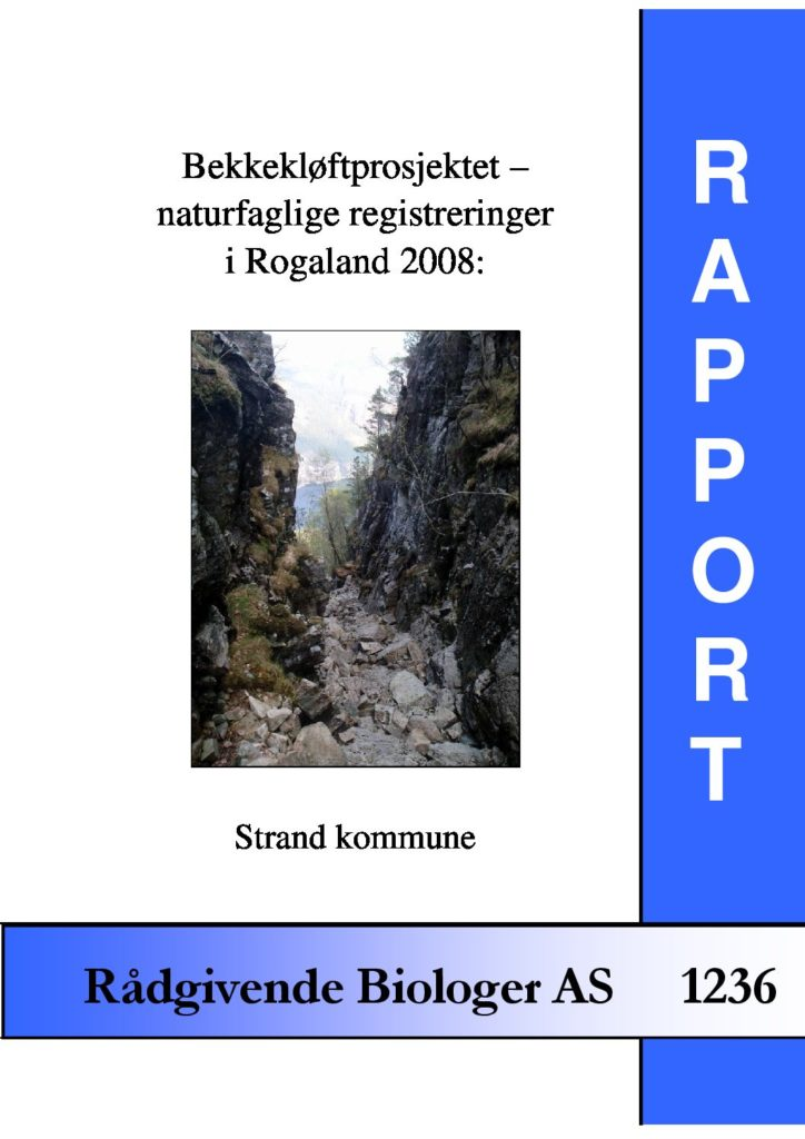 Rapport cover - rapport 1236