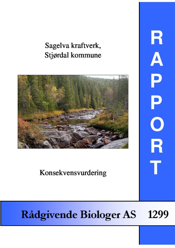 Rapport cover - rapport 1299