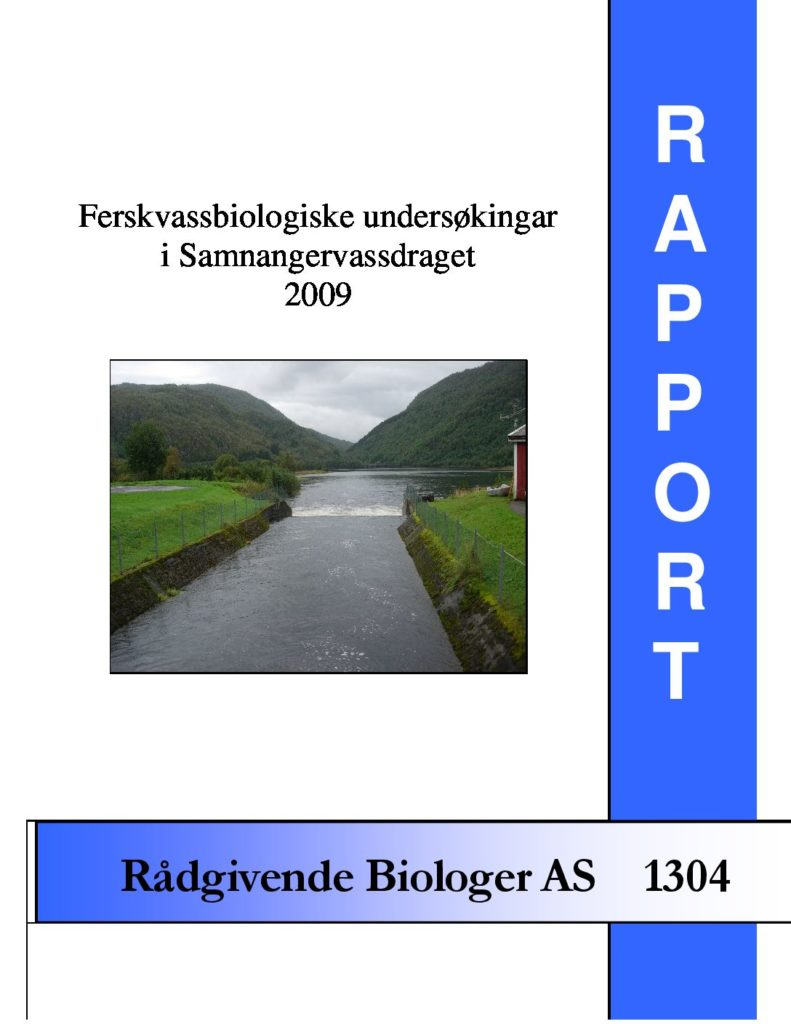 Rapport cover - rapport 1304