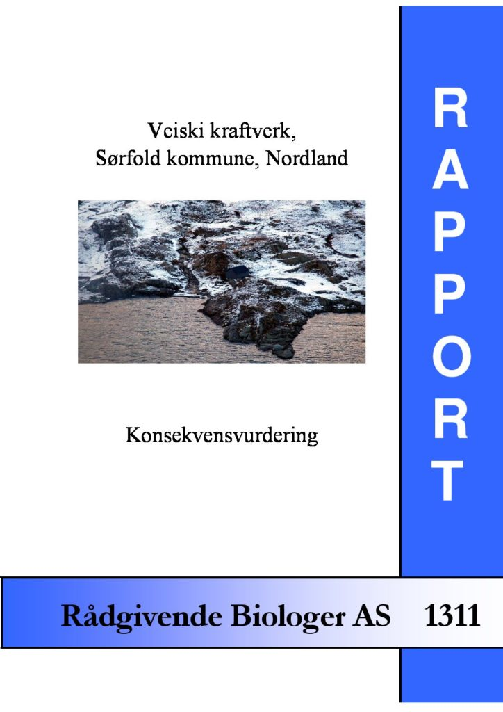 Rapport cover - rapport 1311