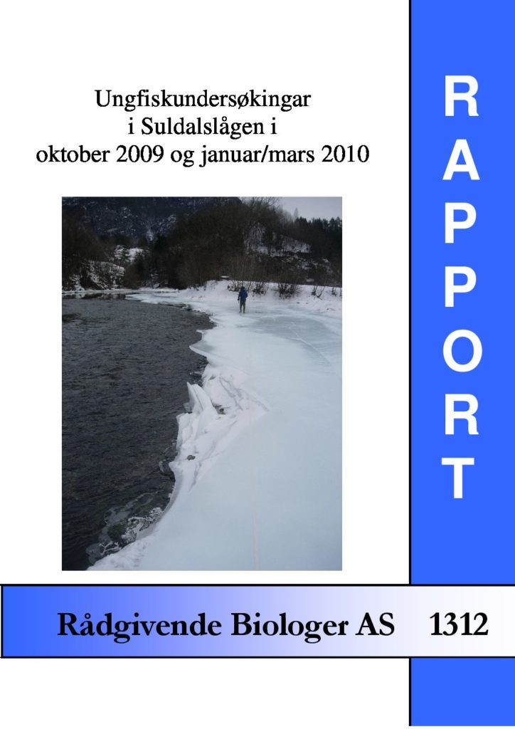Rapport cover - rapport 1312