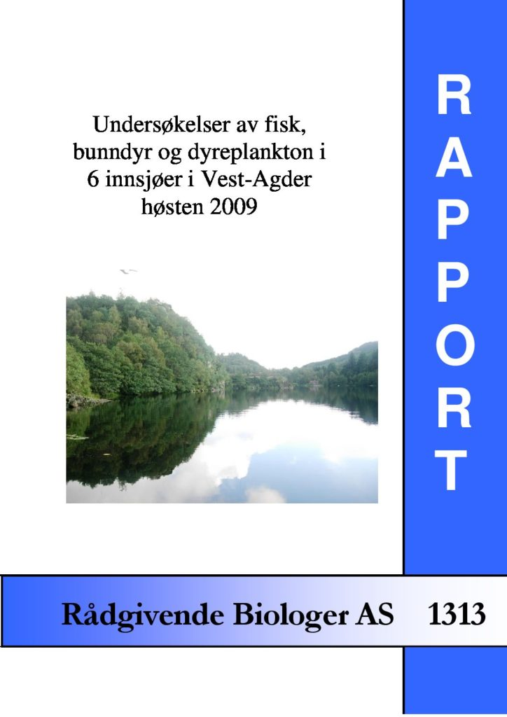 Rapport cover - rapport 1313