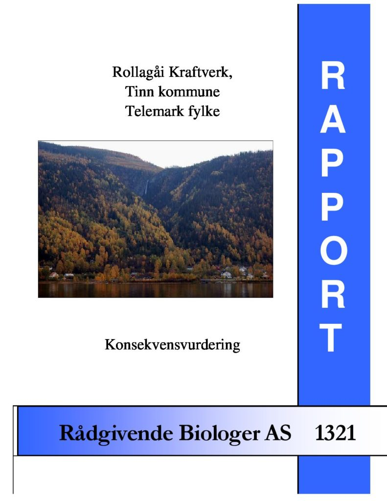 Rapport cover - rapport 1321