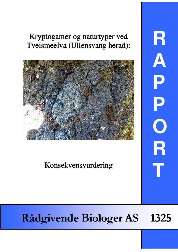 Rapport cover - rapport 1325