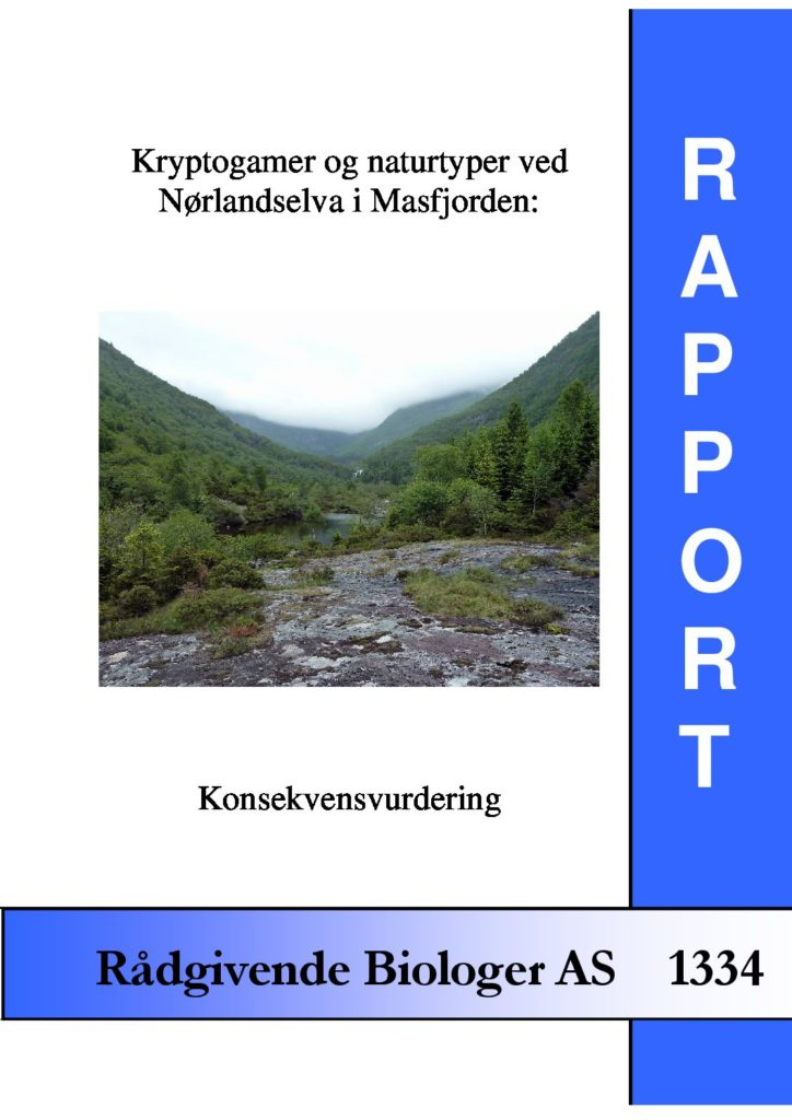 Rapport cover - rapport 1334