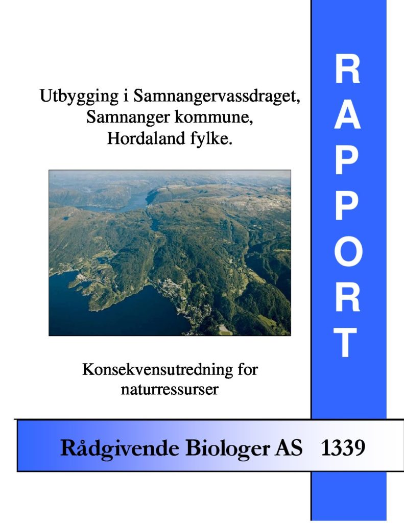 Rapport cover - rapport 1339