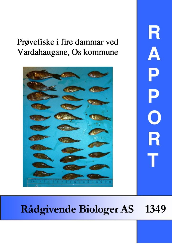 Rapport cover - rapport 1349