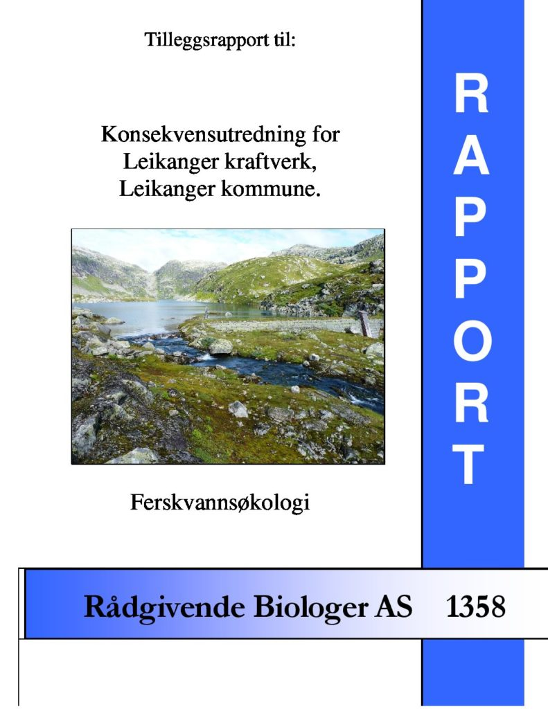 Rapport cover - rapport 1358