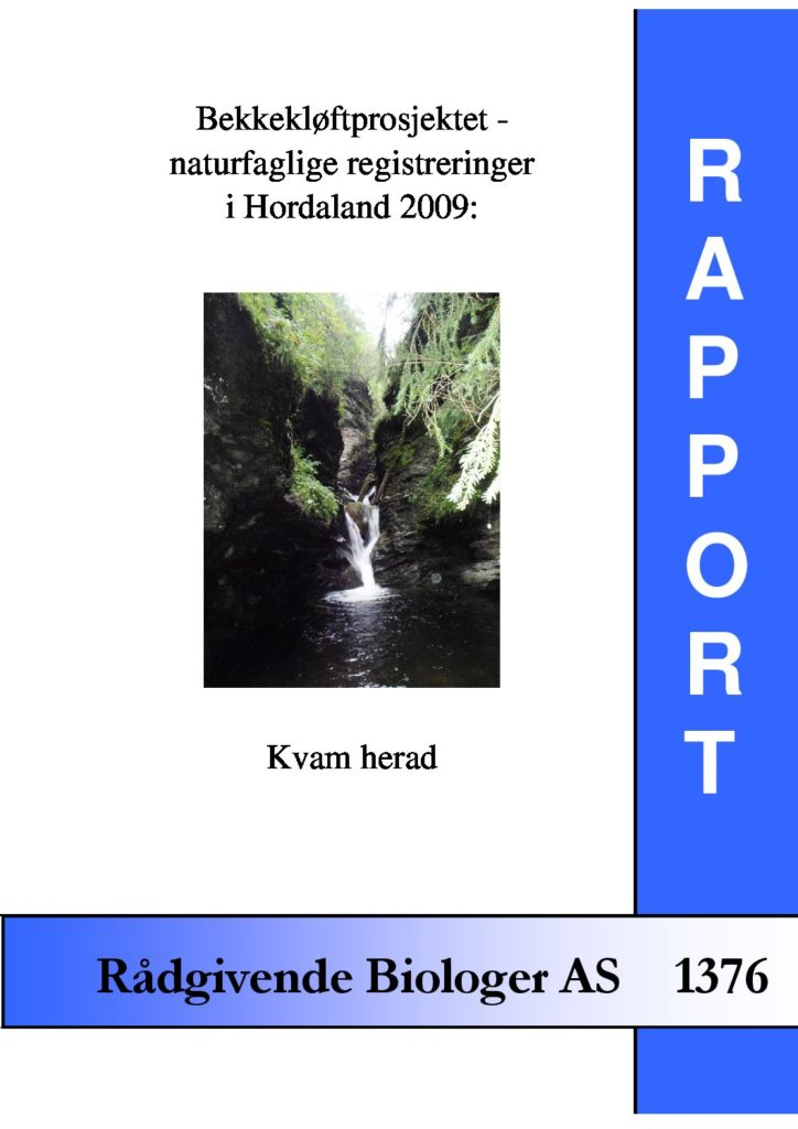 Rapport cover - rapport 1376
