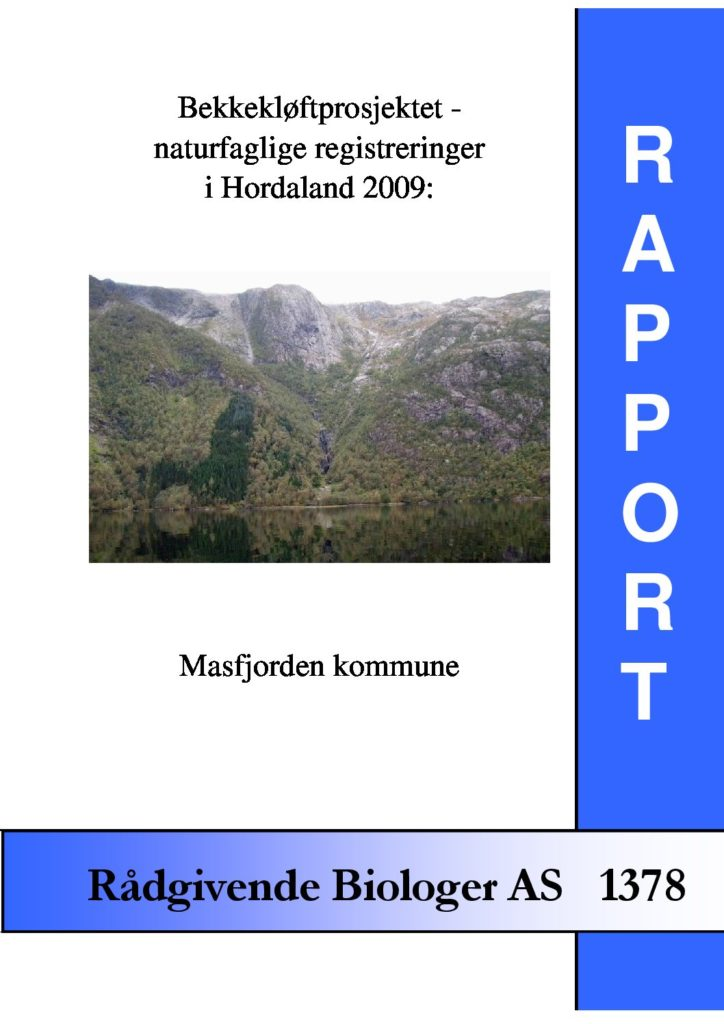 Rapport cover - rapport 1378