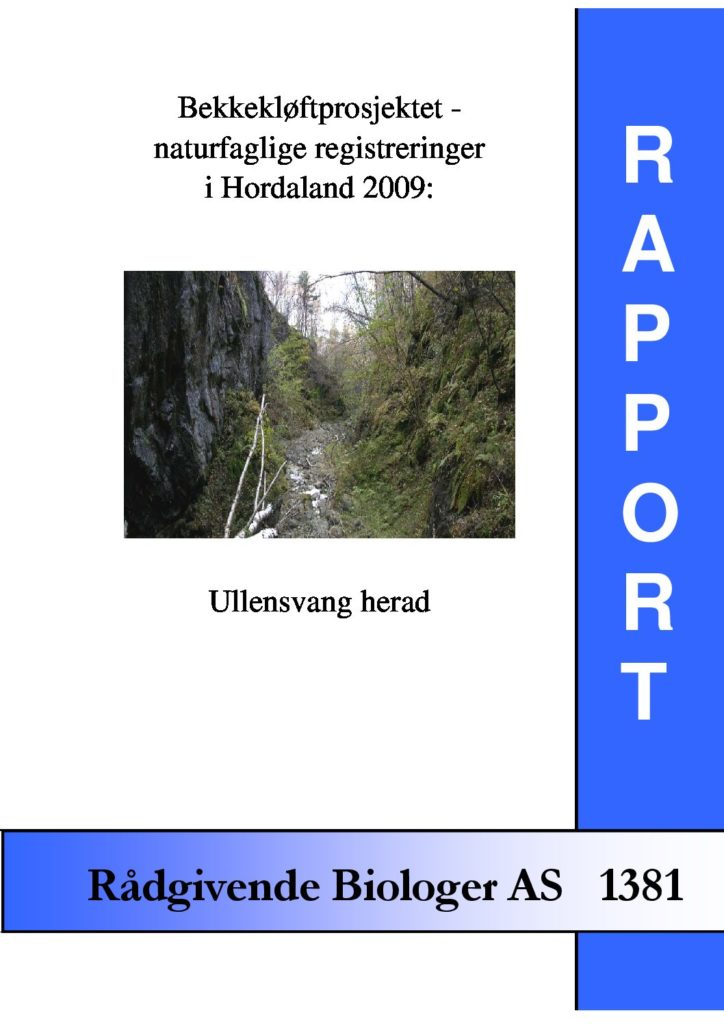 Rapport cover - rapport 1381
