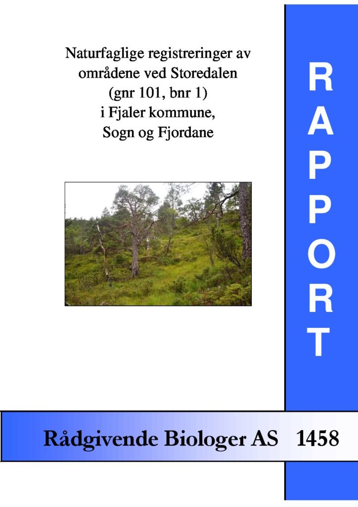 Rapport cover - rapport 1458