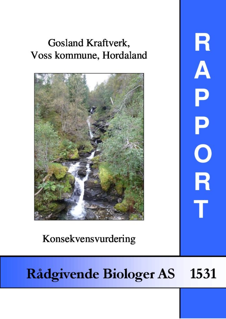 Rapport cover - rapport 1531