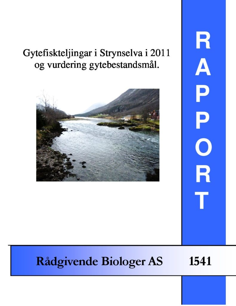 Rapport cover - rapport 1541