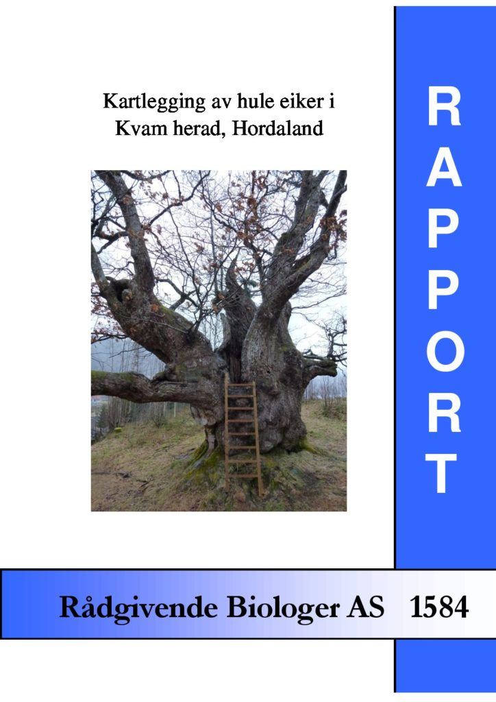 Rapport cover - rapport 1584