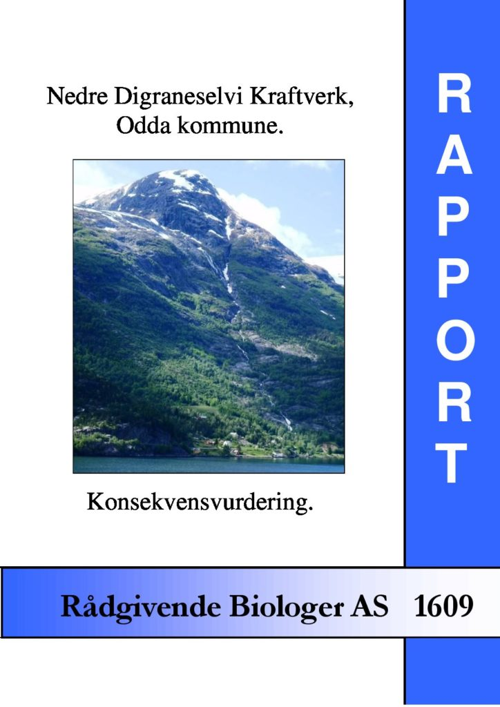 Rapport cover - rapport 1609