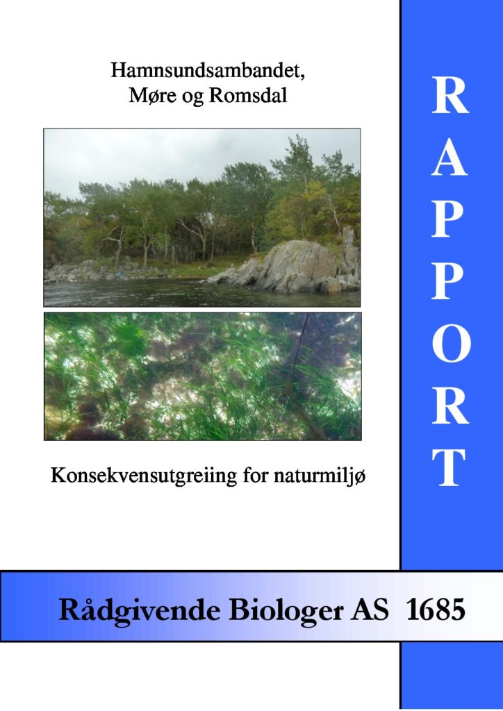 Rapport cover - rapport 1685