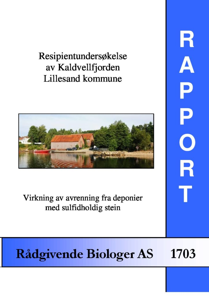 Rapport cover - rapport 1703