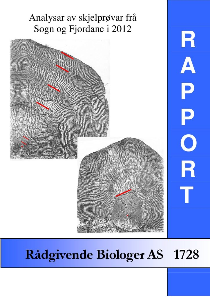 Rapport cover - rapport 1728