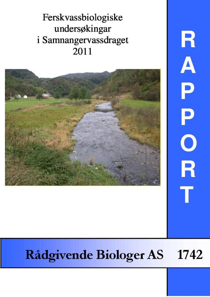 Rapport cover - rapport 1742