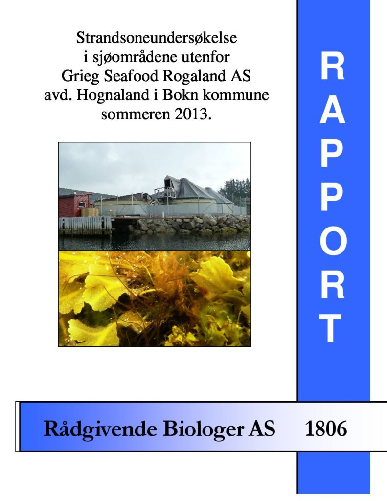 Rapport cover - rapport 1806