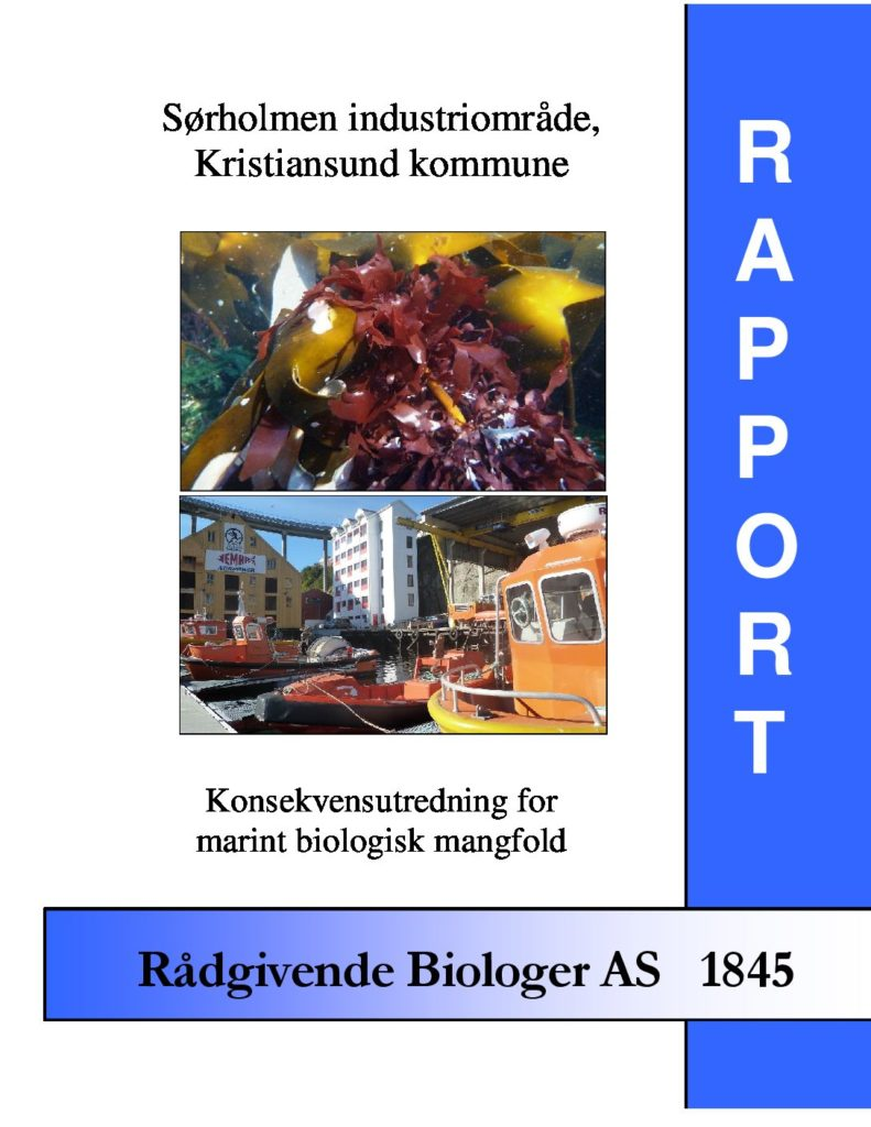 Rapport cover - rapport 1845