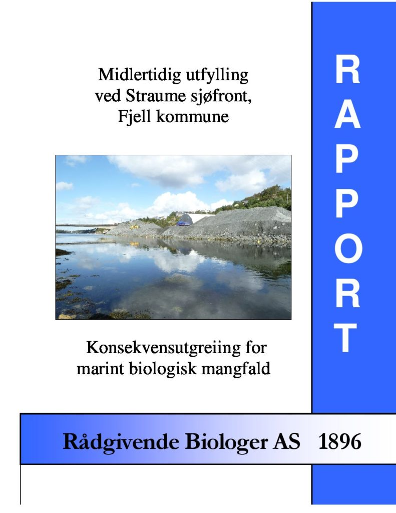 Rapport cover - rapport 1896