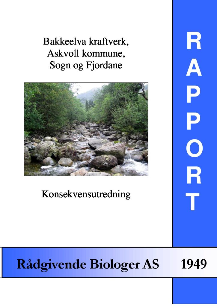 Rapport cover - rapport 1949