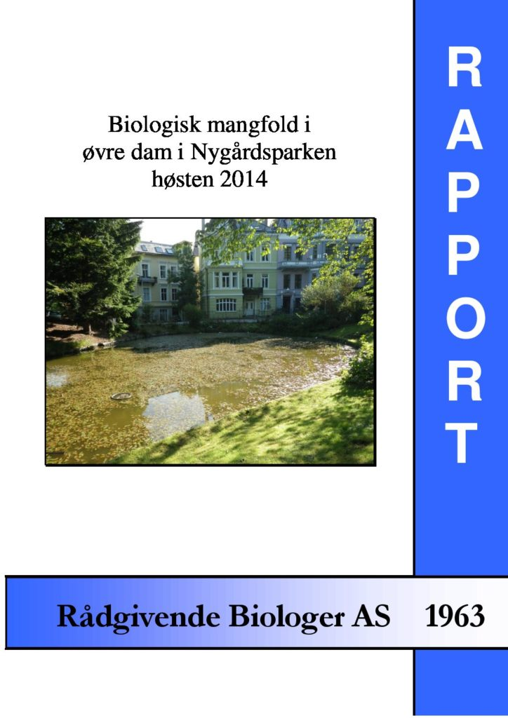 Rapport cover - rapport 1963