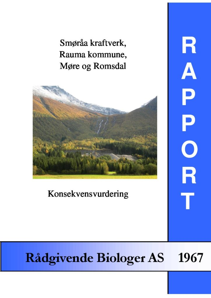 Rapport cover - rapport 1967