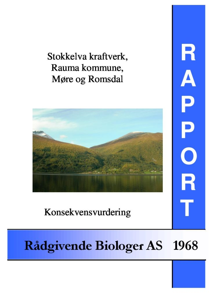 Rapport cover - rapport 1968