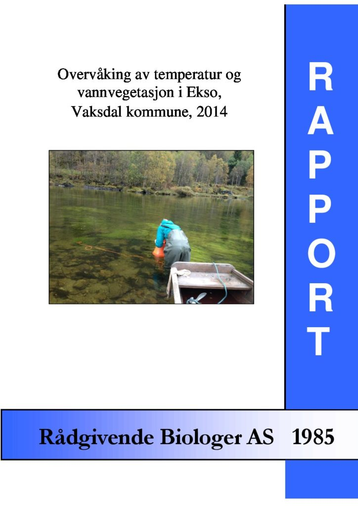 Rapport cover - rapport 1985