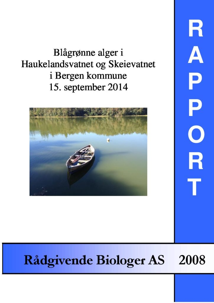 Rapport cover - rapport 2008