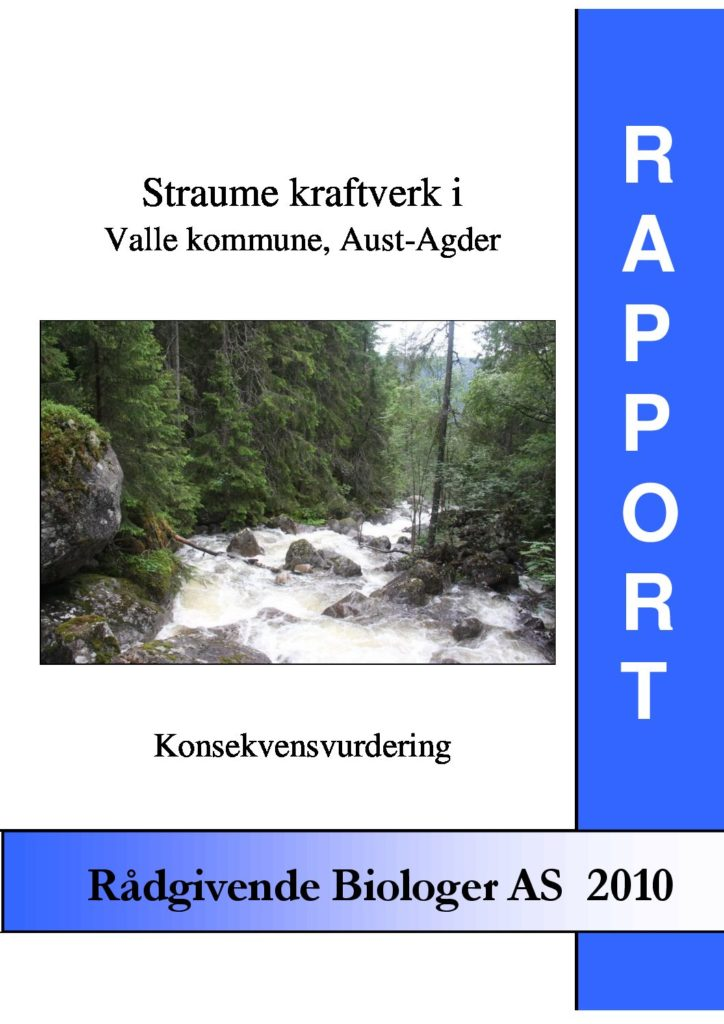 Rapport cover - rapport 2010