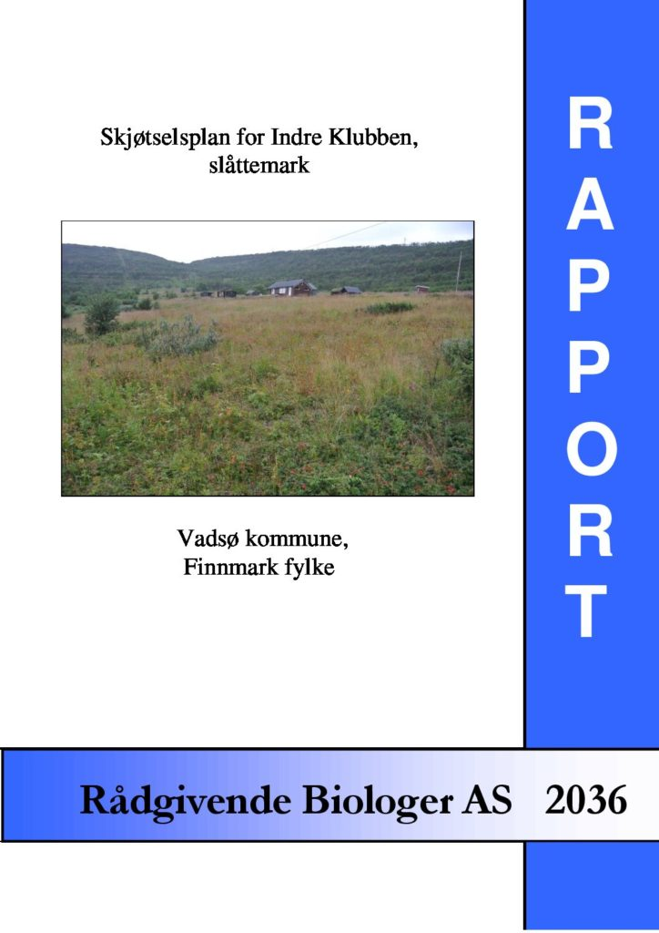 Rapport cover - rapport 2036