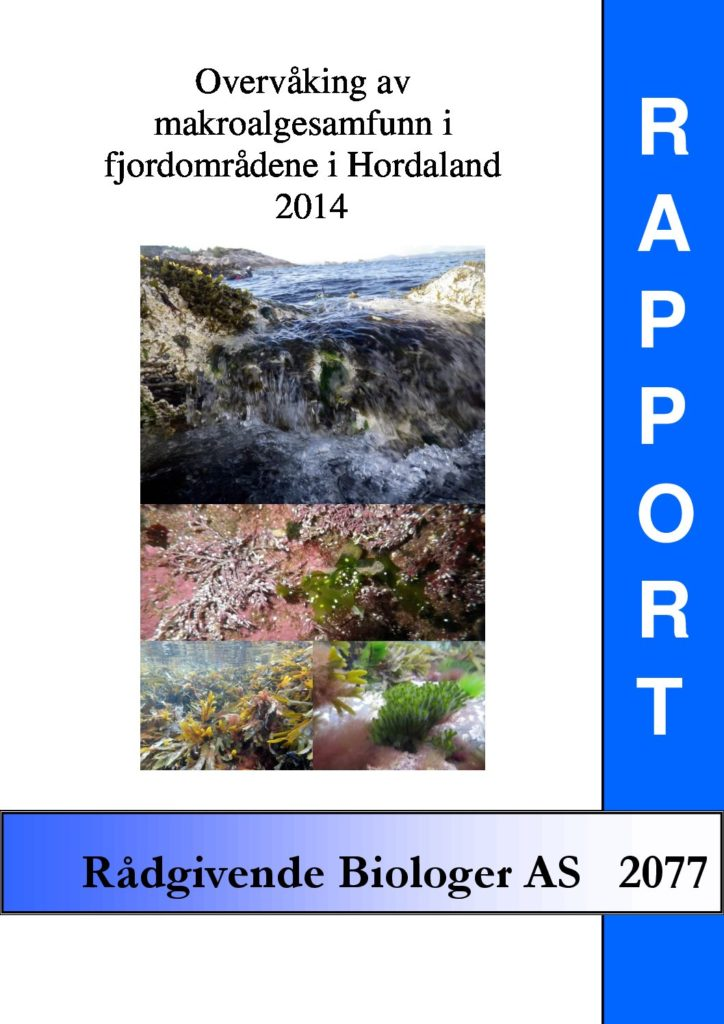 Rapport cover - rapport 2077