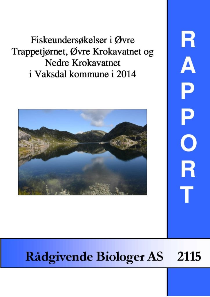 Rapport cover - rapport 2115