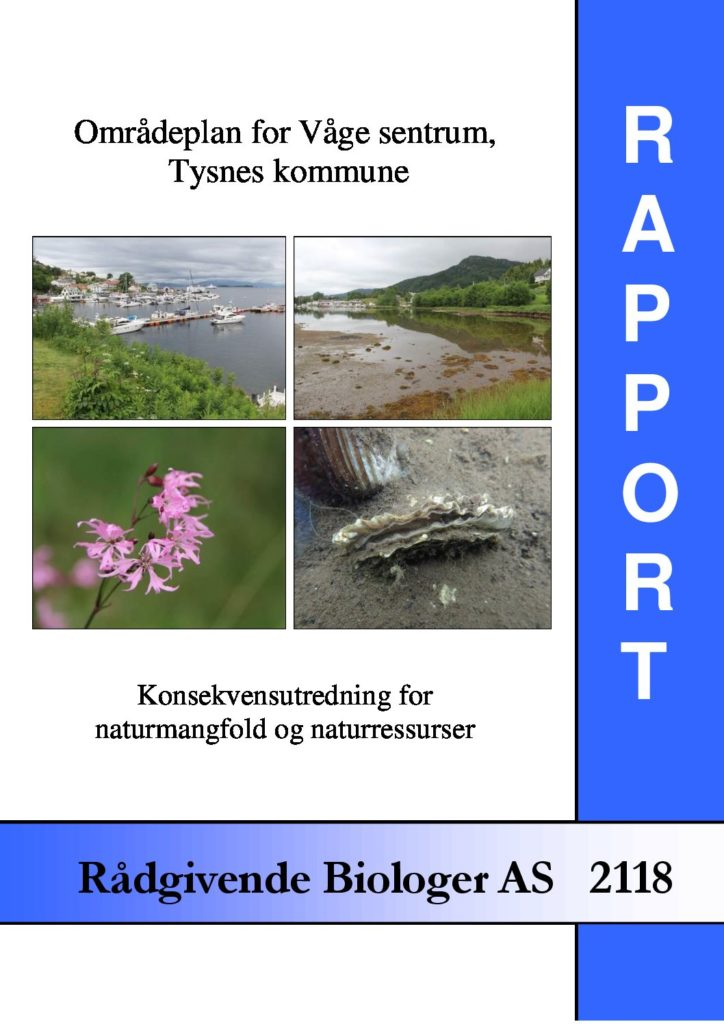 Rapport cover - rapport 2118