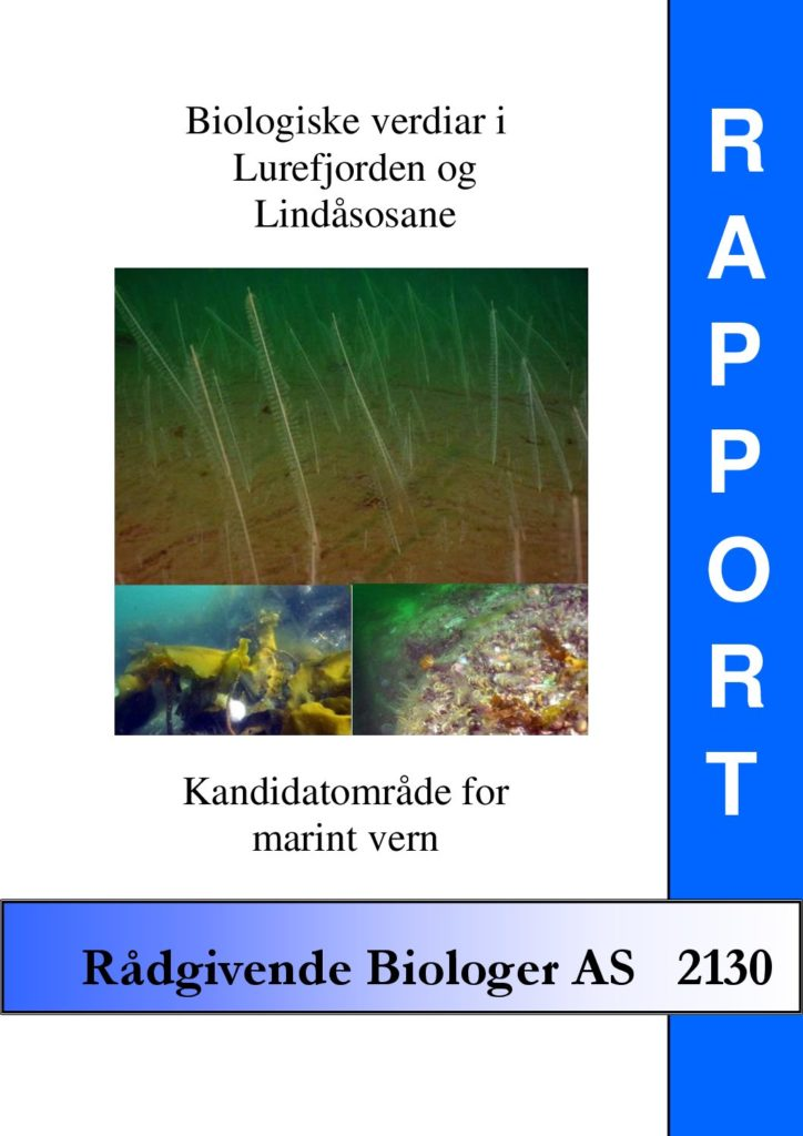 Rapport cover - rapport 2130